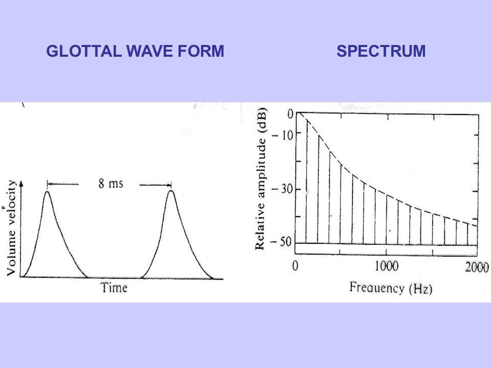 GLOTTAL WAVE FORMSPECTRUM