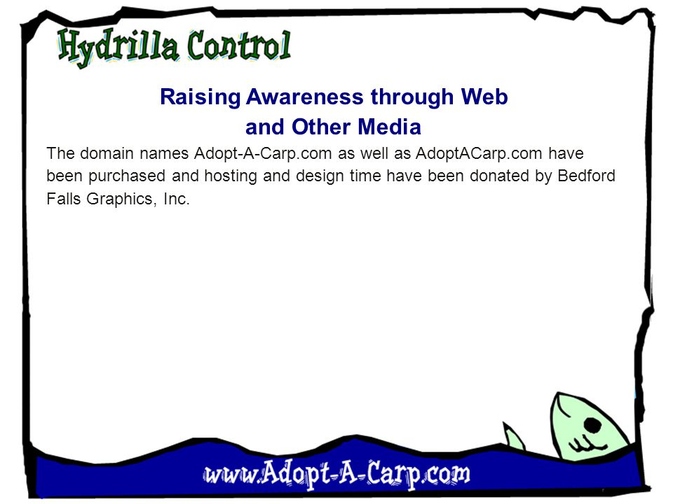 Raising Awareness through Web and Other Media The domain names Adopt-A-Carp.com as well as AdoptACarp.com have been purchased and hosting and design time have been donated by Bedford Falls Graphics, Inc.