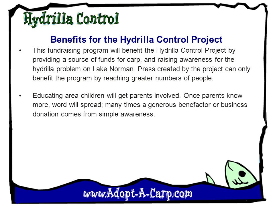 Benefits for the Hydrilla Control Project This fundraising program will benefit the Hydrilla Control Project by providing a source of funds for carp,