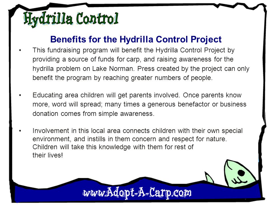 Benefits for the Hydrilla Control Project This fundraising program will benefit the Hydrilla Control Project by providing a source of funds for carp, and raising awareness for the hydrilla problem on Lake Norman.