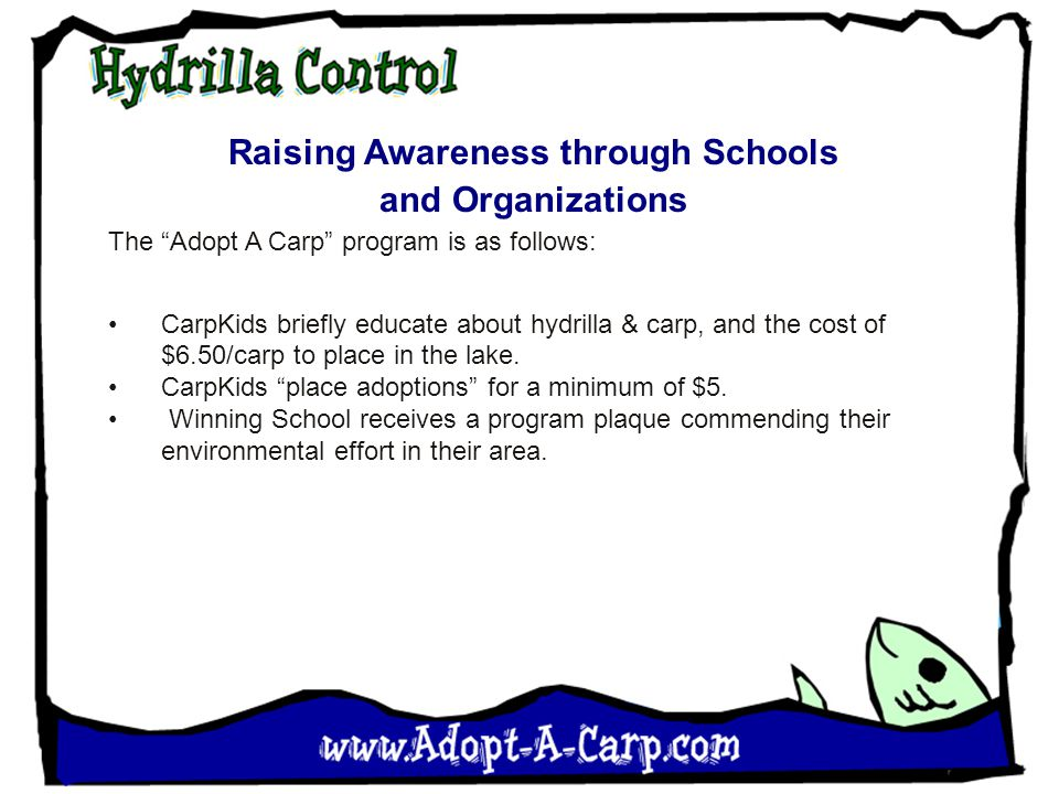 Raising Awareness through Schools and Organizations The Adopt A Carp program is as follows: CarpKids briefly educate about hydrilla & carp, and the cost of $6.50/carp to place in the lake.