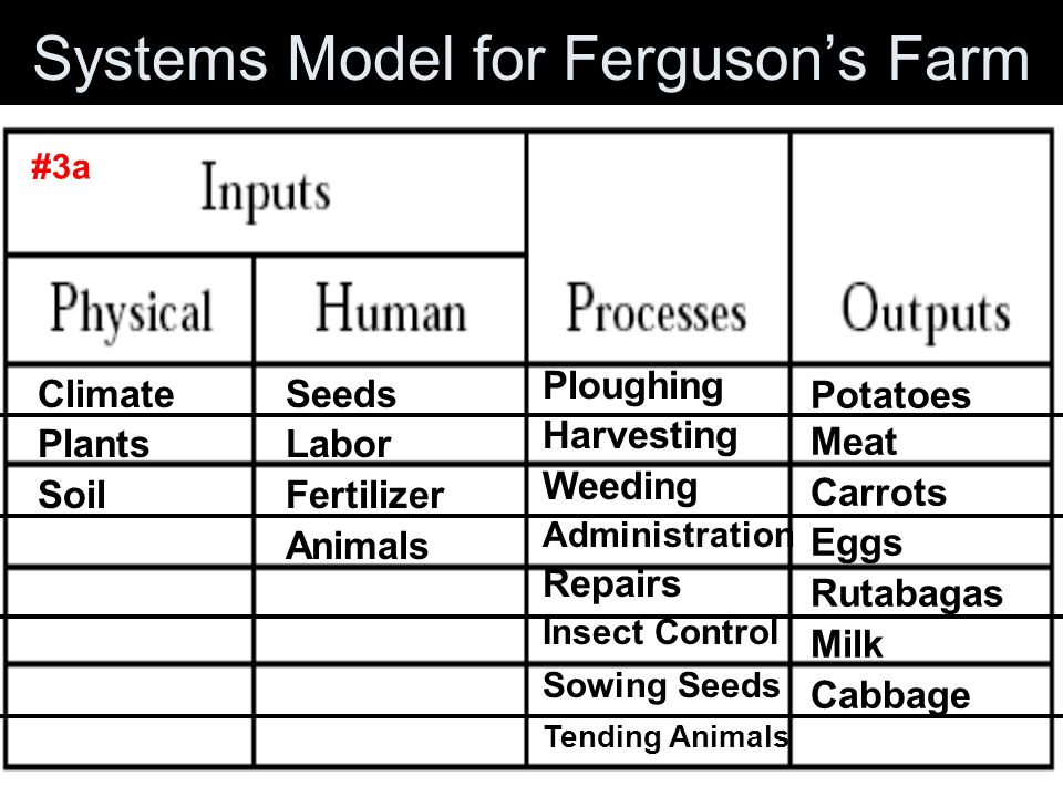 3. How many markets does Ferguson sell his products to? A. 2B. 3 C. 4D. 5 4. How many hectares of land does Ferguson cultivate? A. 9 haB. 10 ha C. 7-8