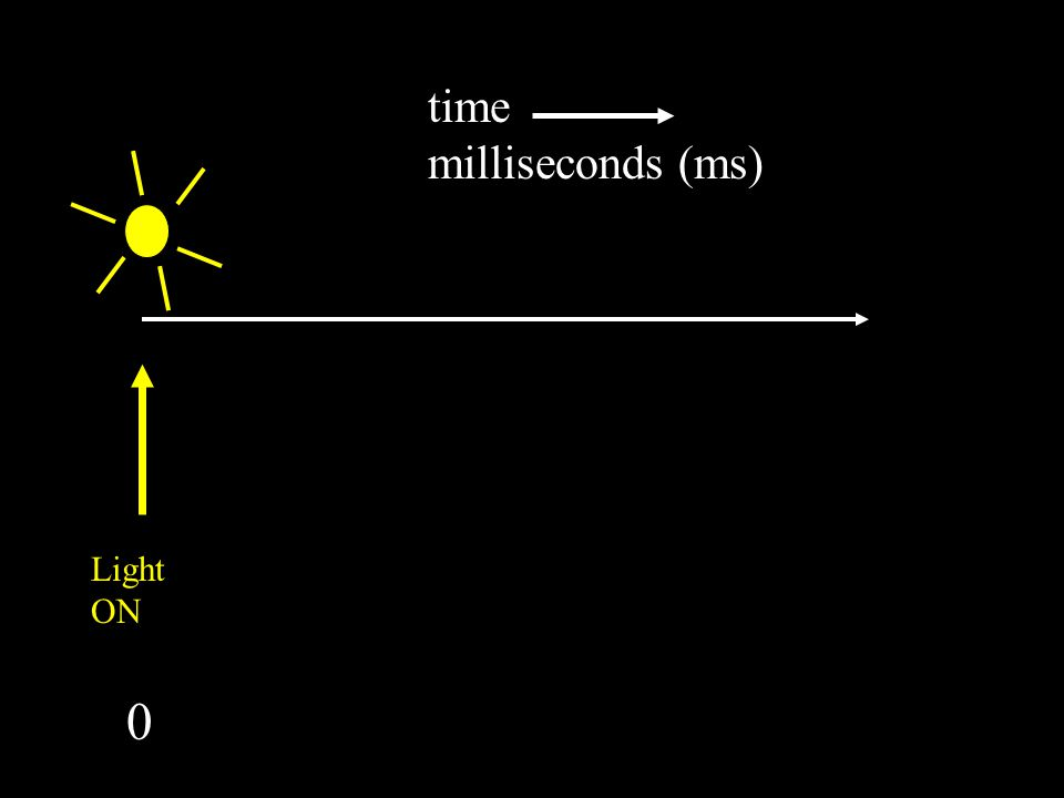 time milliseconds (ms) Button pressed 0 200 Light ON