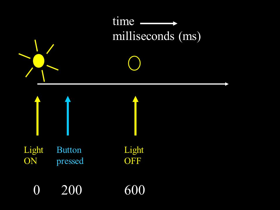 time milliseconds (ms) Button pressed 0 200 600 1000 Light ON Light OFF Button pressed