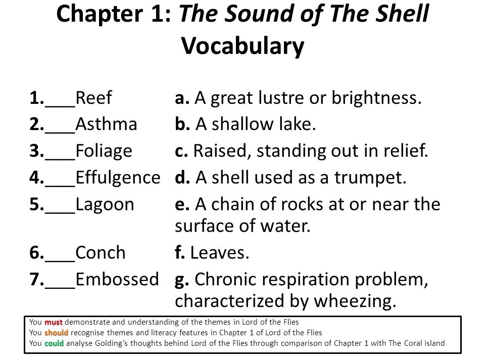 Chapter 1: The Sound of The Shell Vocabulary 1.___Reef a.