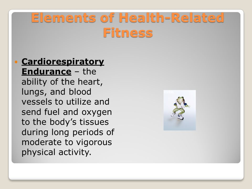 Health-Related Fitness Muscular Strength – the amount of force a muscle can exert.