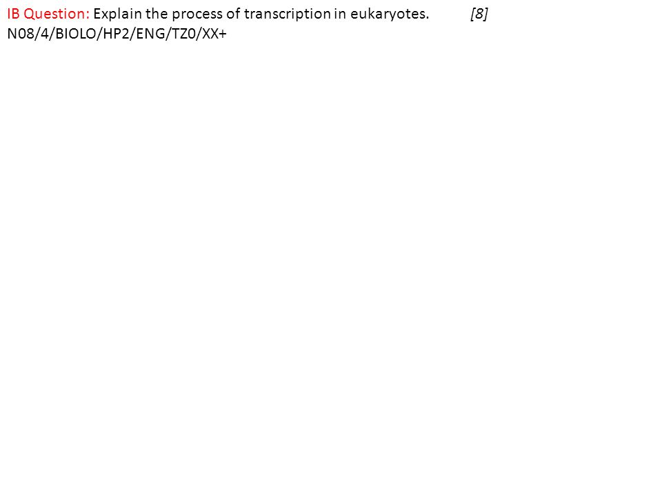 IB Question: Explain the process of transcription in eukaryotes.[8] N08/4/BIOLO/HP2/ENG/TZ0/XX+