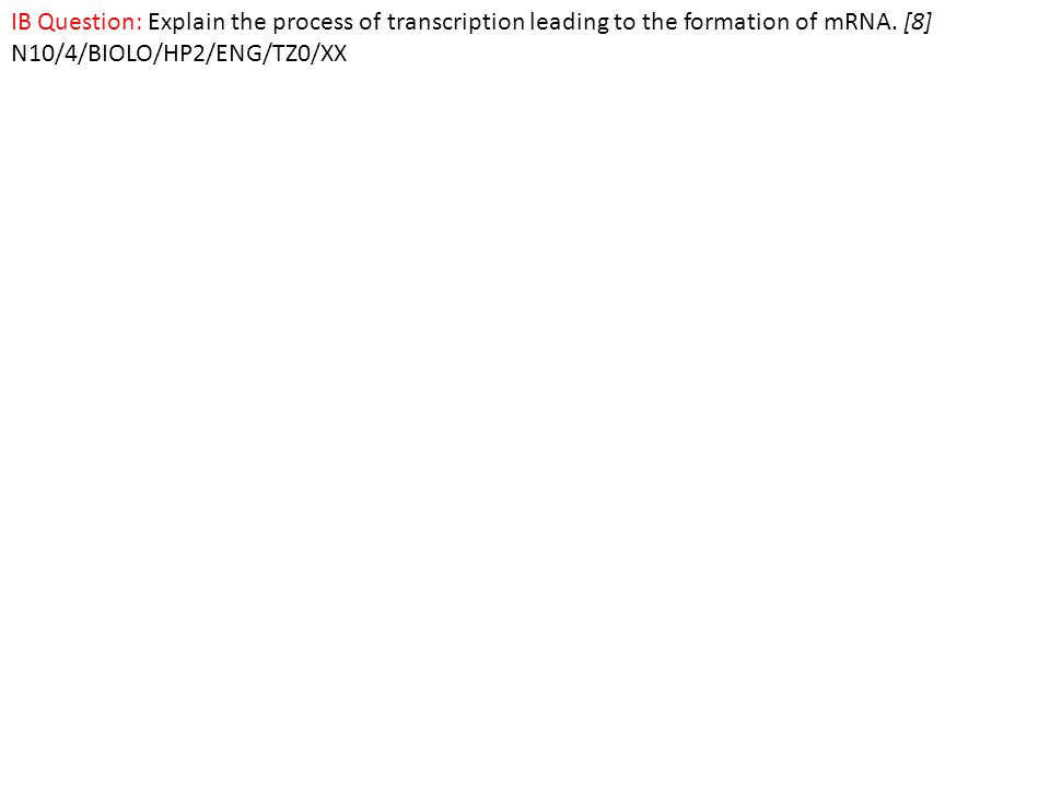 IB Question: Explain the process of transcription leading to the formation of mRNA.