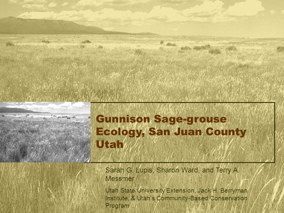 Gunnison Sage-grouse Ecology, San Juan County Utah Sarah G. Lupis, Sharon Ward, and Terry A. Messmer Utah State University Extension, Jack H. Berryman