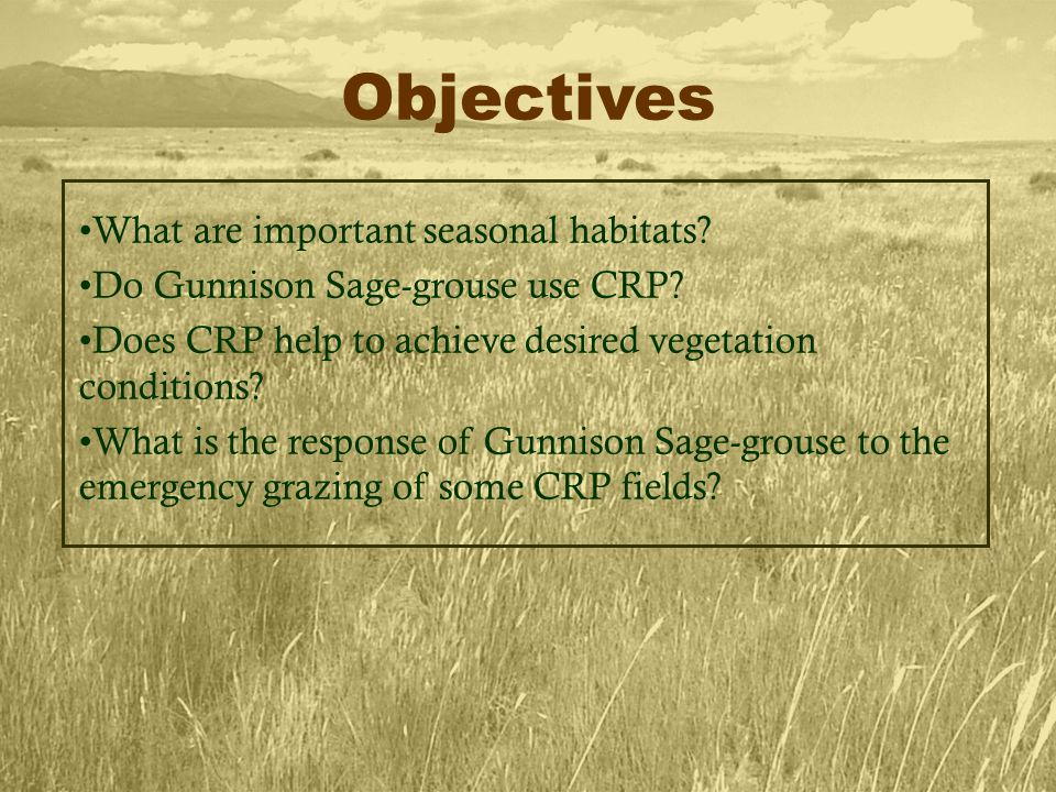 What are important seasonal habitats. Do Gunnison Sage-grouse use CRP.