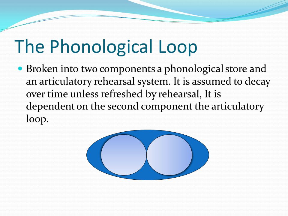 Central Executive Visuospatial Sketchpad Episodic Buffer Phonological loop Episodic LTM Visual Semantics Language