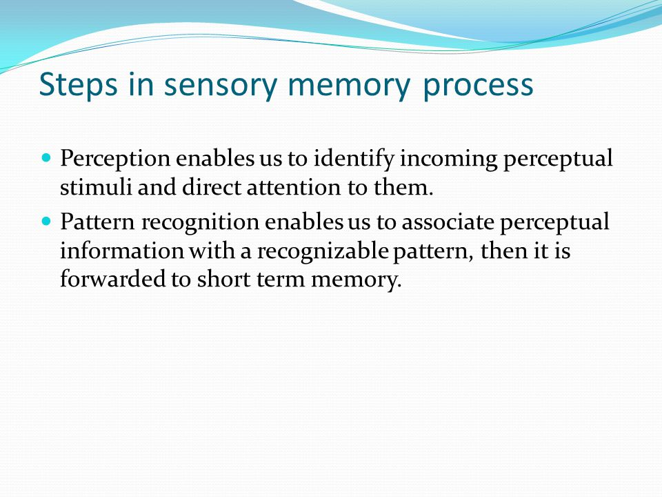 Two Types of Sensory Registers Visual registers are very limited. visual memory can only process 7 to 9 pieces of information at any given time. Infor