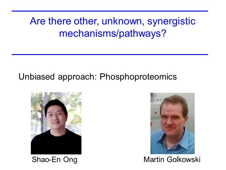 Are there other, unknown, synergistic mechanisms/pathways.
