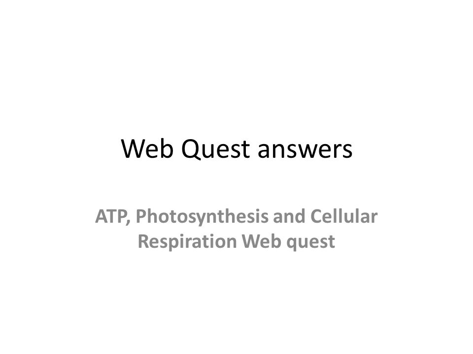 Web Quest answers ATP, Photosynthesis and Cellular Respiration Web quest