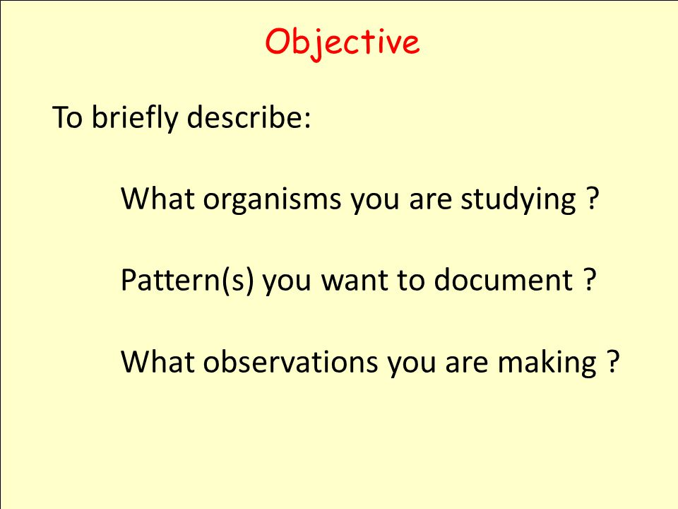 Objective To briefly describe: What organisms you are studying .