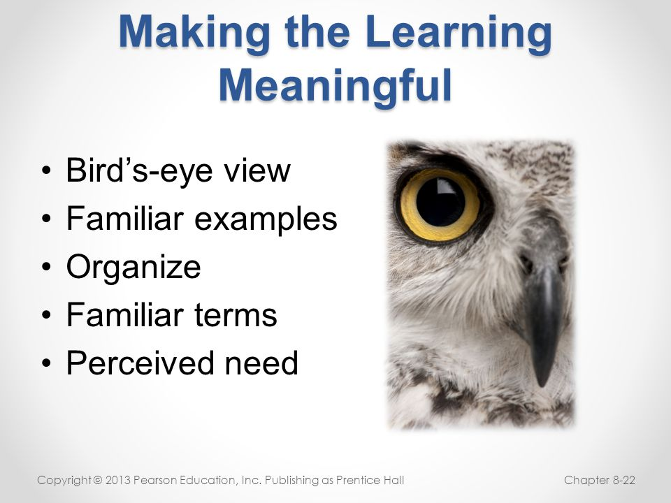 Making the Learning Meaningful Bird's-eye view Familiar examples Organize Familiar terms Perceived need Copyright © 2013 Pearson Education, Inc. Publi