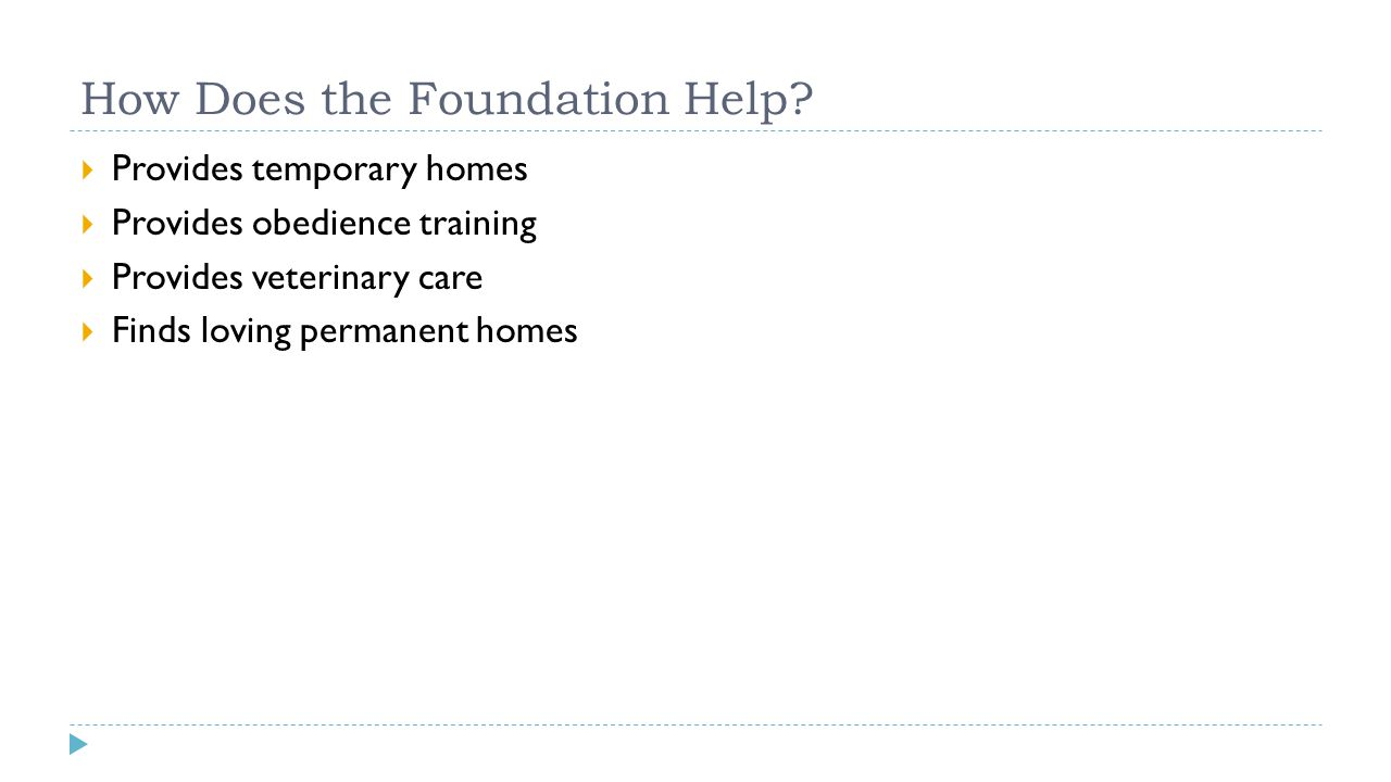 How Does the Foundation Help?  Provides temporary homes  Provides obedience training  Provides veterinary care  Finds loving permanent homes