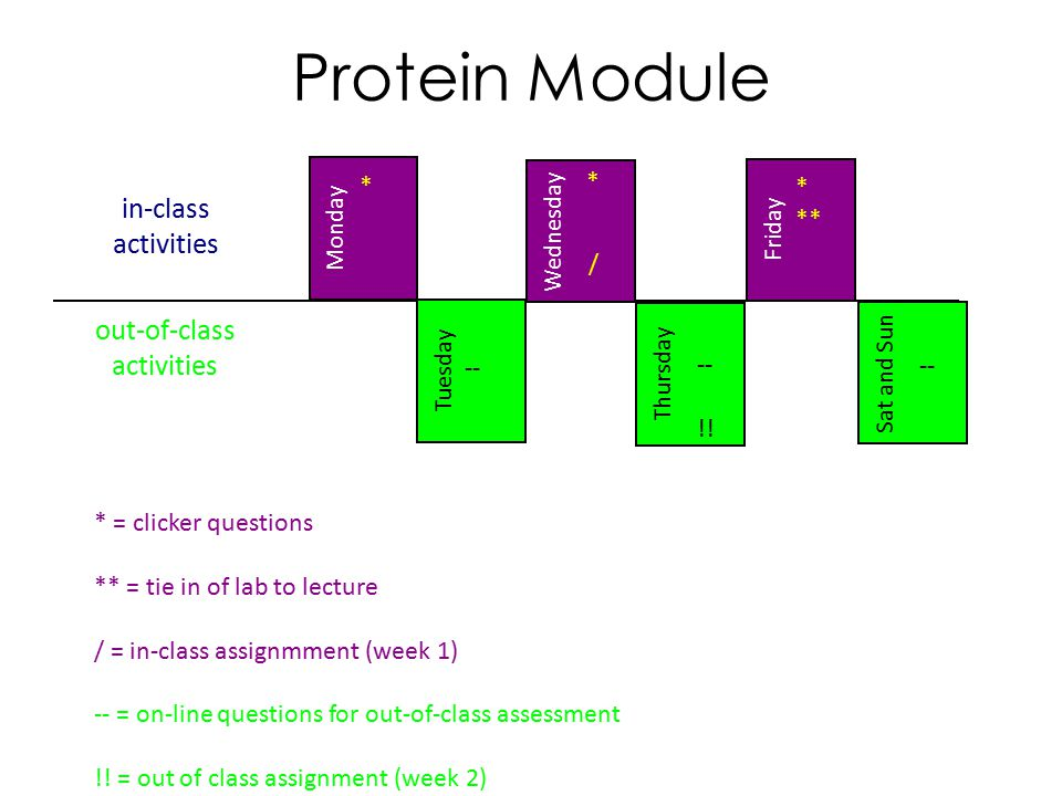 in-class activities Sat and Sun Tuesday Thursday Wednesday Friday Monday out-of-class activities Protein Module * ** * * -- !.