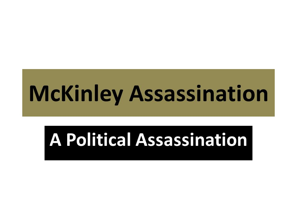 McKinley Assassination A Political Assassination