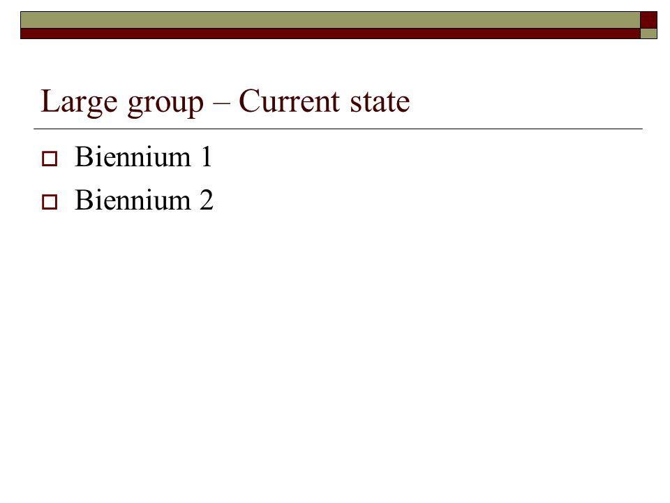 Large group – Current state  Biennium 1  Biennium 2