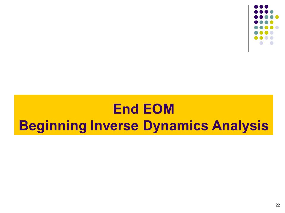 End EOM Beginning Inverse Dynamics Analysis 22