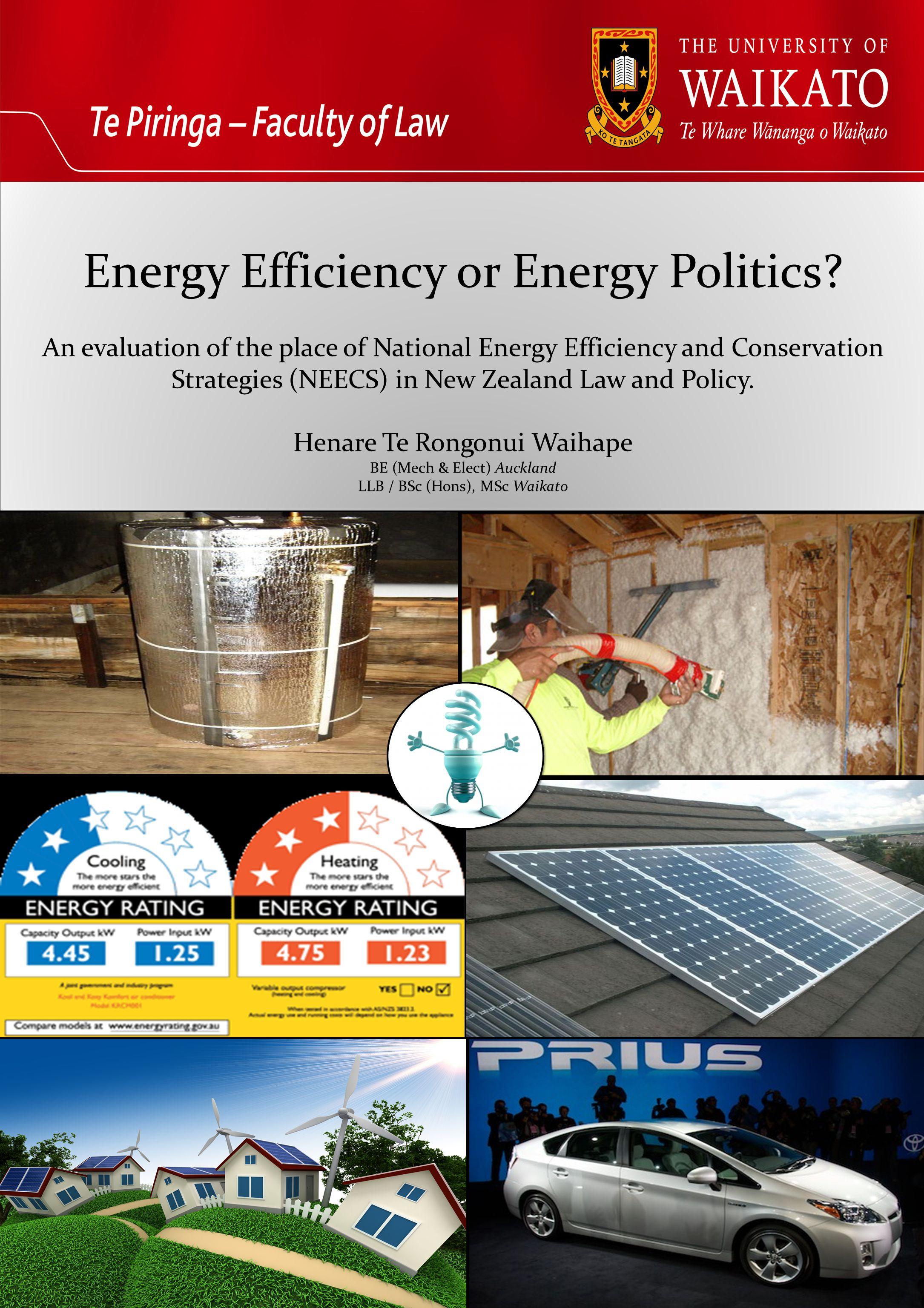 Energy Efficiency or Energy Politics.