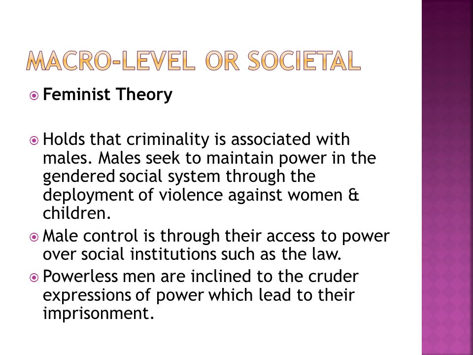  Feminist Theory  Holds that criminality is associated with males. Males seek to maintain power in the gendered social system through the deployment