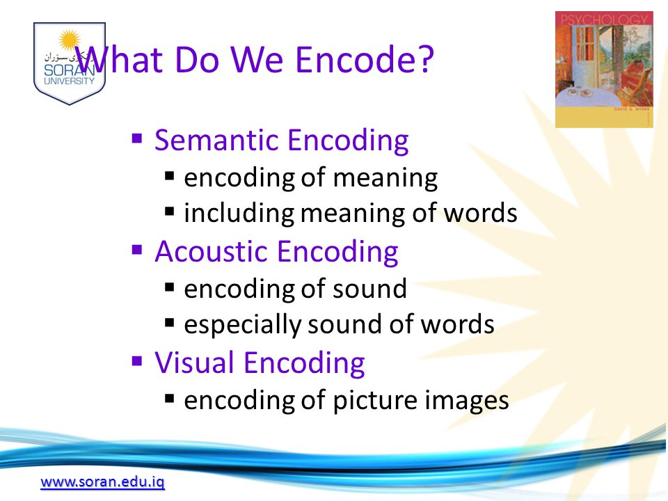 www.soran.edu.iq What Do We Encode?  Semantic Encoding  encoding of meaning  including meaning of words  Acoustic Encoding  encoding of sound  e