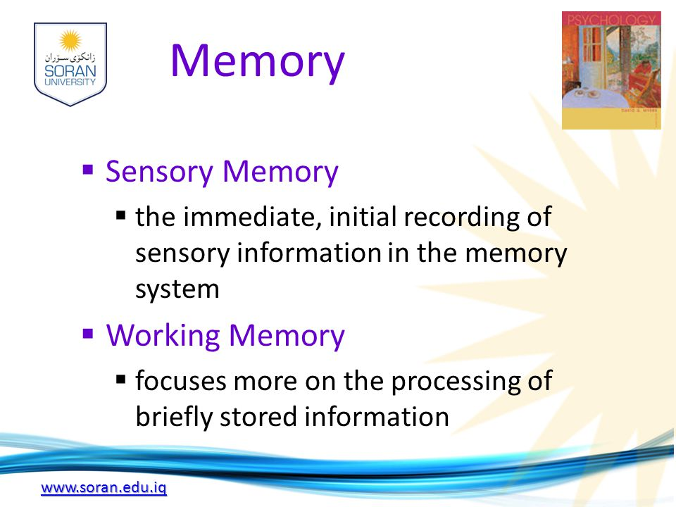 www.soran.edu.iq Memory  Sensory Memory  the immediate, initial recording of sensory information in the memory system  Working Memory  focuses mor