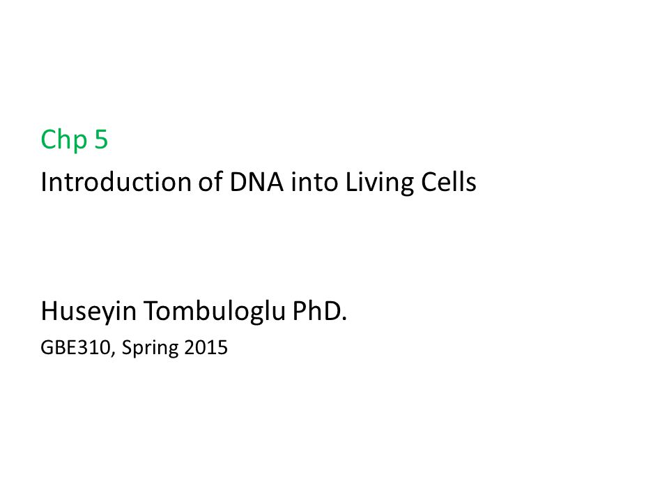 Chp 5 Introduction of DNA into Living Cells Huseyin Tombuloglu PhD. GBE310, Spring 2015