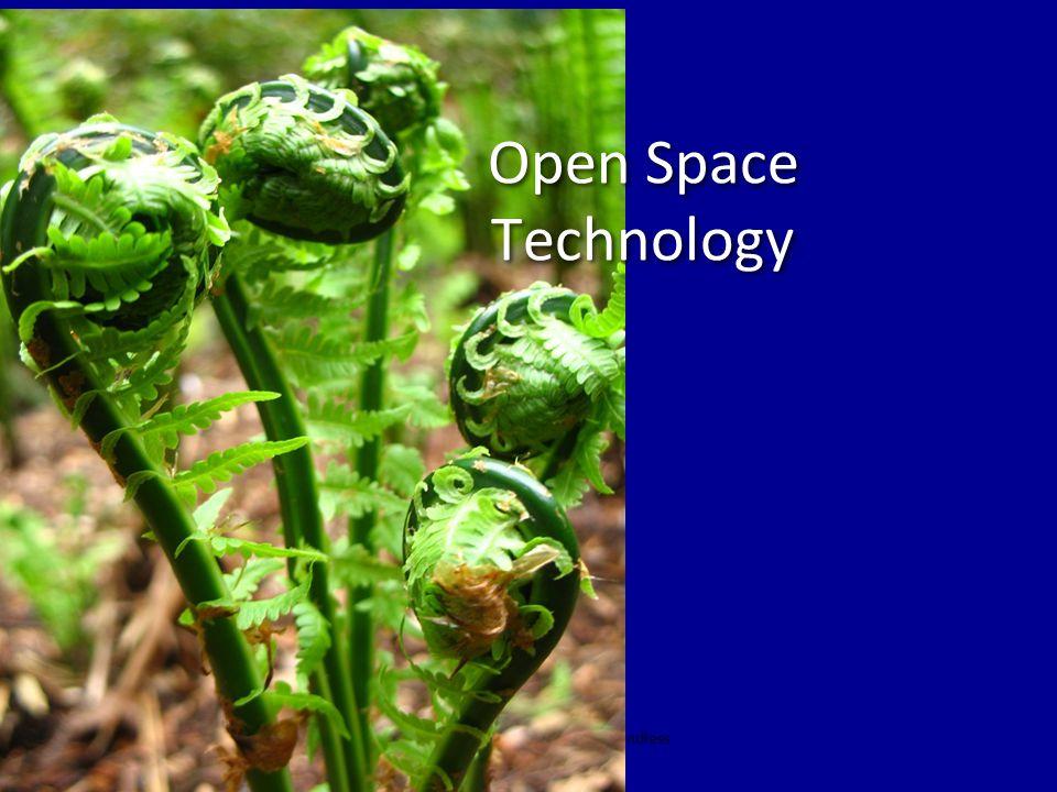 Henri Lipmanowicz & Keith McCandless Open Space Technology