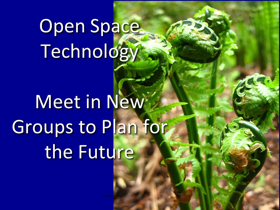 Henri Lipmanowicz & Keith McCandless Open Space Technology Meet in New Groups to Plan for the Future