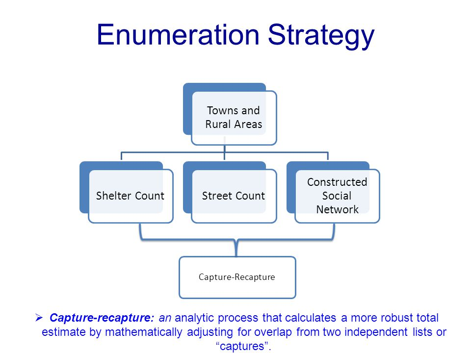 Enumeration Strategy Towns and Rural Areas Shelter CountStreet Count Constructed Social Network Capture-Recapture  Capture-recapture: an analytic pro