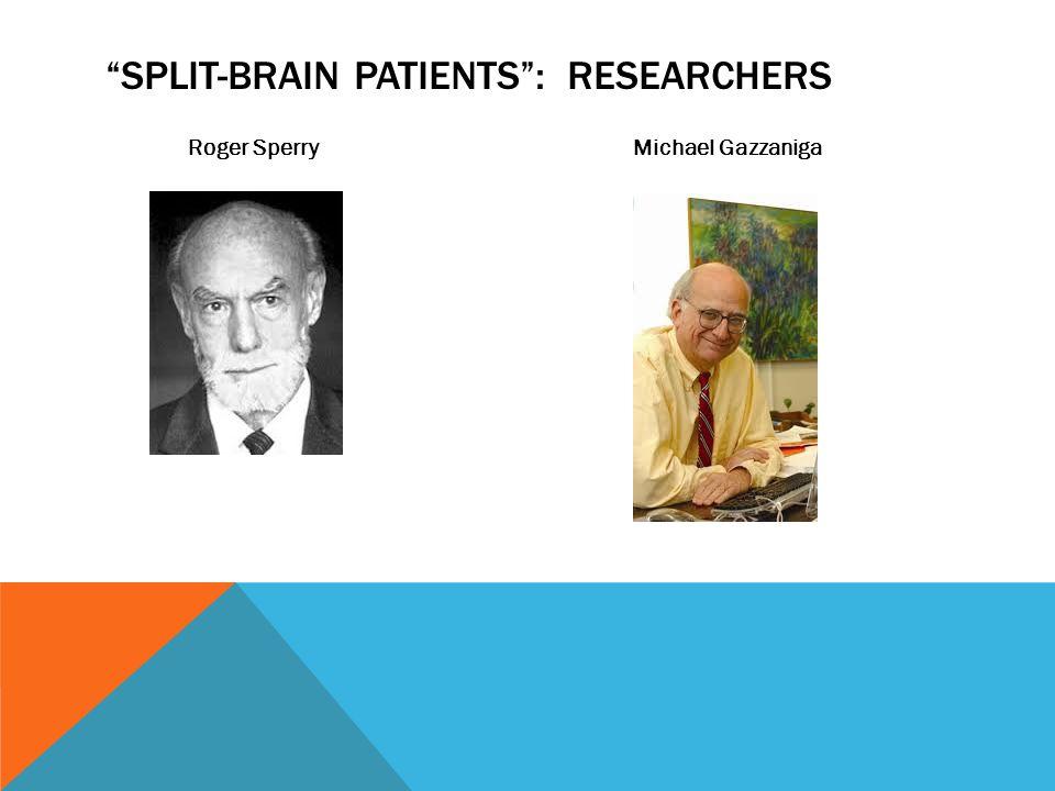 SPLIT-BRAIN PATIENTS : RESEARCHERS Roger Sperry Michael Gazzaniga