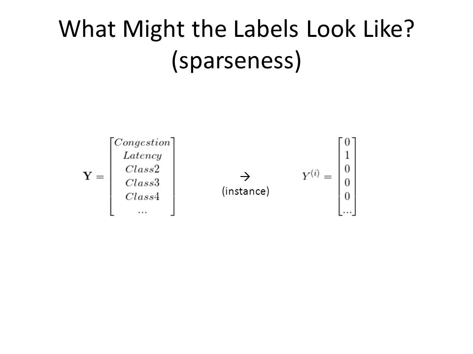 What Might the Labels Look Like? (sparseness)  (instance)