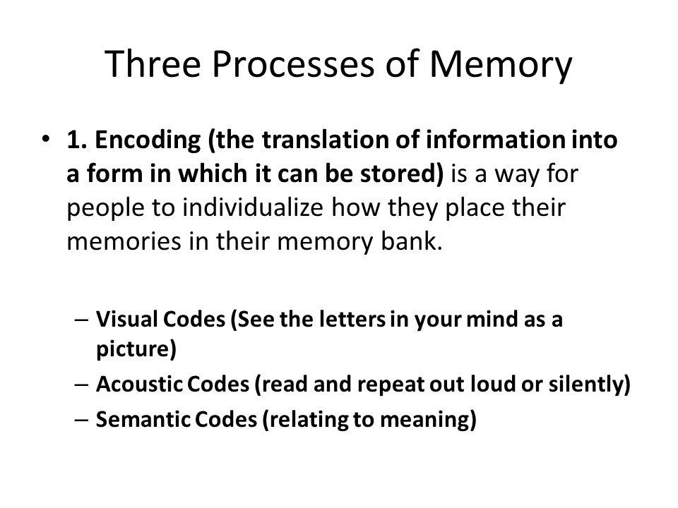 Three Process of Memory 2.