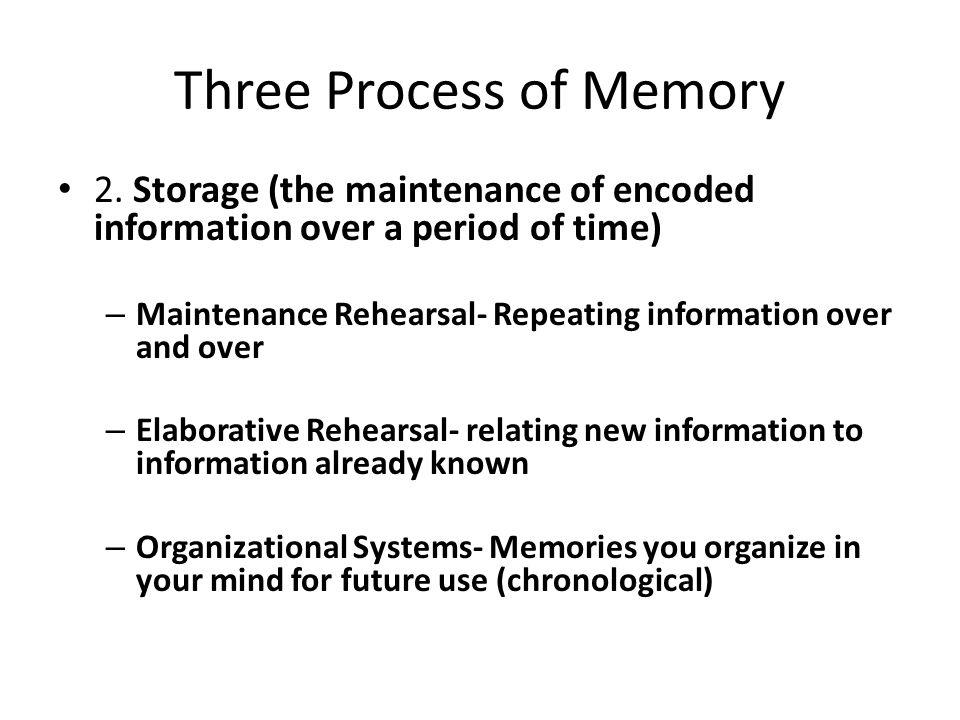 Three Processes of Memory 3.