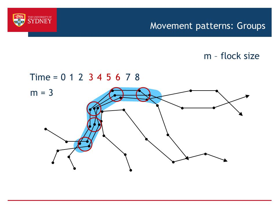 Time = 016543278 m = 3 m – flock size Movement patterns: Groups