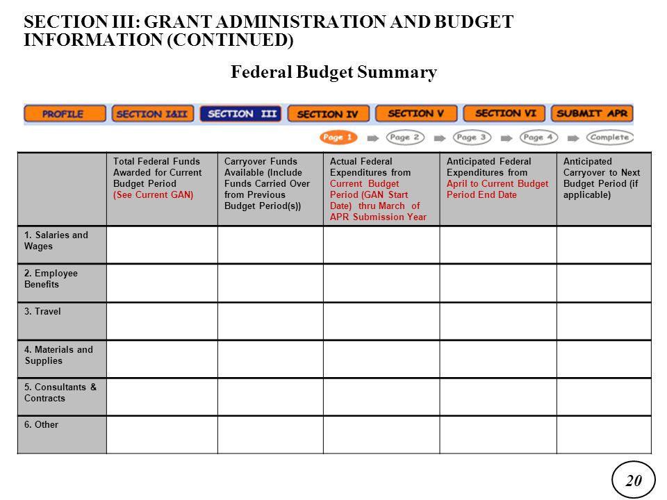 Total Federal Funds Awarded for Current Budget Period (See Current GAN) Carryover Funds Available (Include Funds Carried Over from Previous Budget Period(s)) Actual Federal Expenditures from Current Budget Period (GAN Start Date) thru March of APR Submission Year Anticipated Federal Expenditures from April to Current Budget Period End Date Anticipated Carryover to Next Budget Period (if applicable) 1.