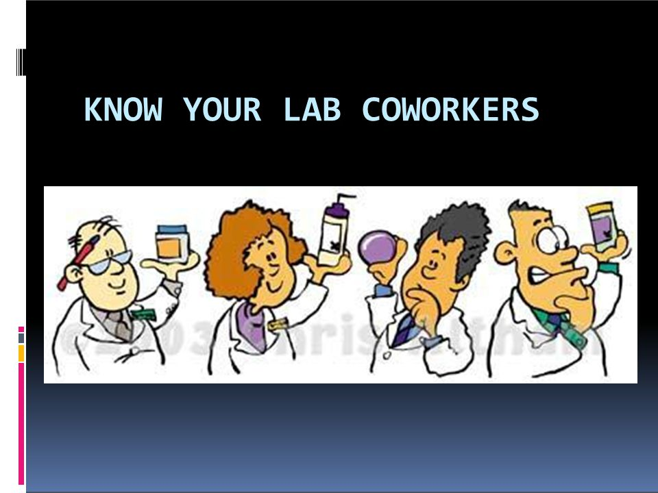 What to do on the first few weeks  Set up and organize your lab bench or desk  Introduce yourself to everyone in the lab if the mentor has not done so.