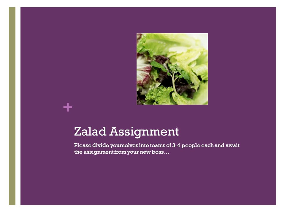 + Zalad Assignment Please divide yourselves into teams of 3-4 people each and await the assignment from your new boss…