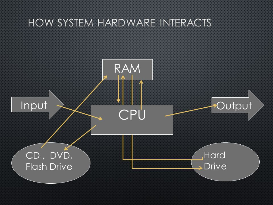 RAM Hard Drive CPU CD, DVD, Flash Drive Input Output
