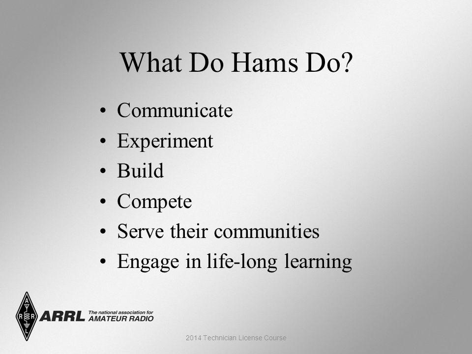 What Do Hams Do.
