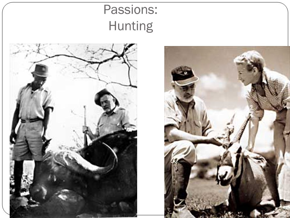 Passions: Hunting