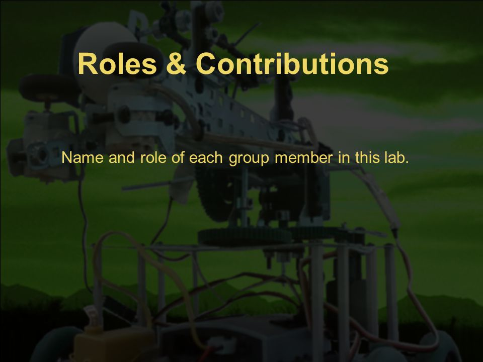 Roles & Contributions Name and role of each group member in this lab.
