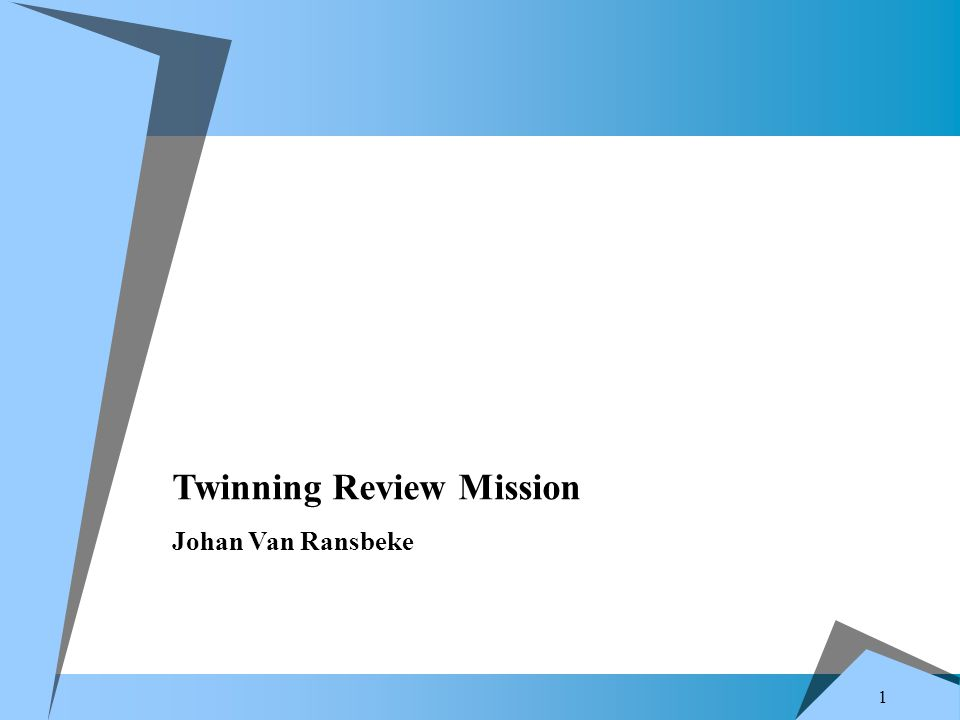 1 Twinning Review Mission Johan Van Ransbeke