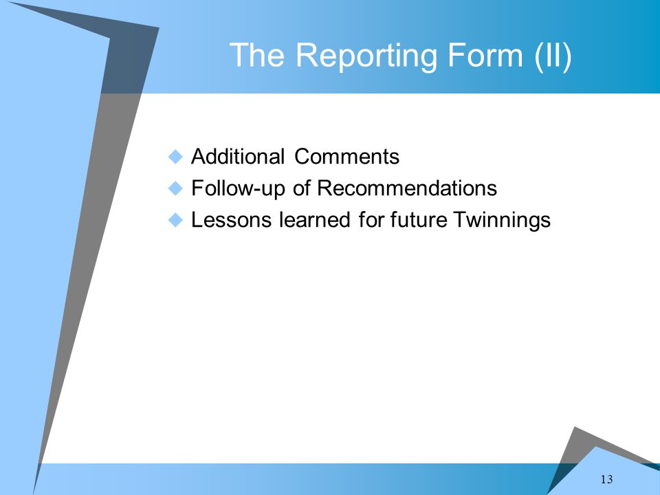 13 The Reporting Form (II)  Additional Comments  Follow-up of Recommendations  Lessons learned for future Twinnings