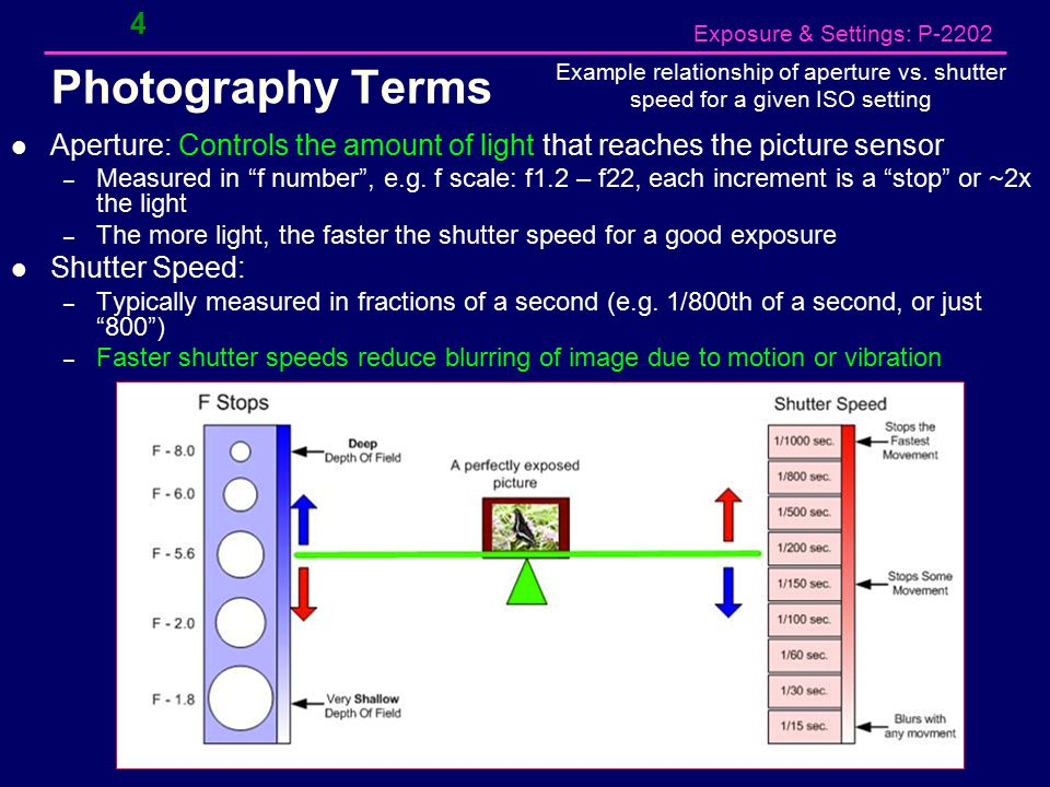 "Exposure & Settings: P-2202 4 Photography Terms Aperture: Controls the amount of light that reaches the picture sensor – Measured in ""f number"", e.g."