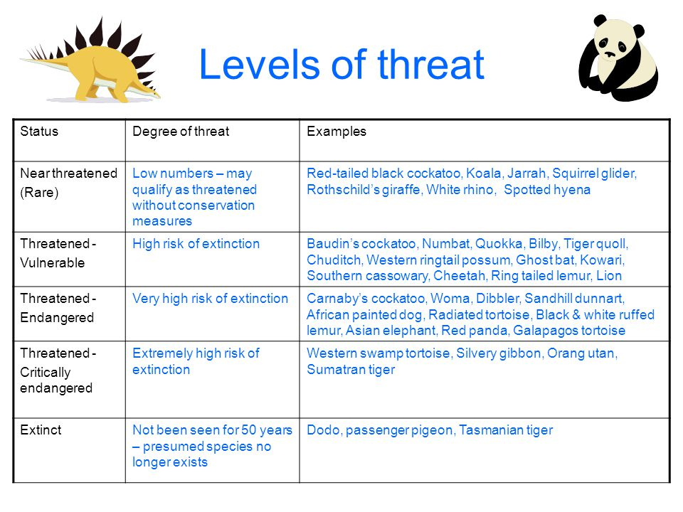 Levels of threat StatusDegree of threatExamples Near threatened (Rare) Low numbers – may qualify as threatened without conservation measures Red-tailed black cockatoo, Koala, Jarrah, Squirrel glider, Rothschild's giraffe, White rhino, Spotted hyena Threatened - Vulnerable High risk of extinctionBaudin's cockatoo, Numbat, Quokka, Bilby, Tiger quoll, Chuditch, Western ringtail possum, Ghost bat, Kowari, Southern cassowary, Cheetah, Ring tailed lemur, Lion Threatened - Endangered Very high risk of extinctionCarnaby's cockatoo, Woma, Dibbler, Sandhill dunnart, African painted dog, Radiated tortoise, Black & white ruffed lemur, Asian elephant, Red panda, Galapagos tortoise Threatened - Critically endangered Extremely high risk of extinction Western swamp tortoise, Silvery gibbon, Orang utan, Sumatran tiger ExtinctNot been seen for 50 years – presumed species no longer exists Dodo, passenger pigeon, Tasmanian tiger