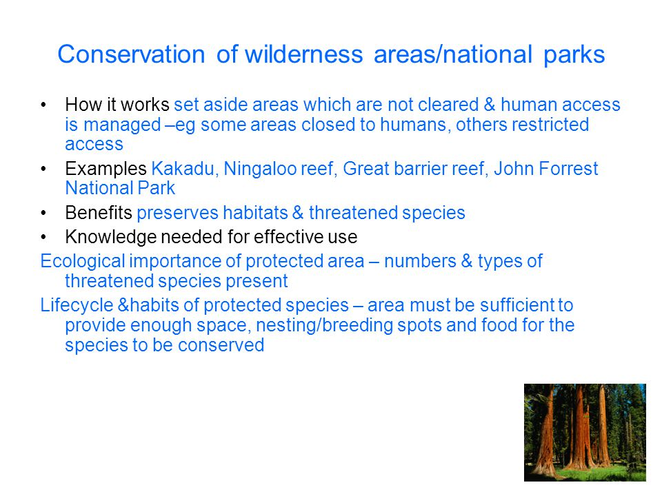 Conservation of wilderness areas/national parks How it works set aside areas which are not cleared & human access is managed –eg some areas closed to humans, others restricted access Examples Kakadu, Ningaloo reef, Great barrier reef, John Forrest National Park Benefits preserves habitats & threatened species Knowledge needed for effective use Ecological importance of protected area – numbers & types of threatened species present Lifecycle &habits of protected species – area must be sufficient to provide enough space, nesting/breeding spots and food for the species to be conserved